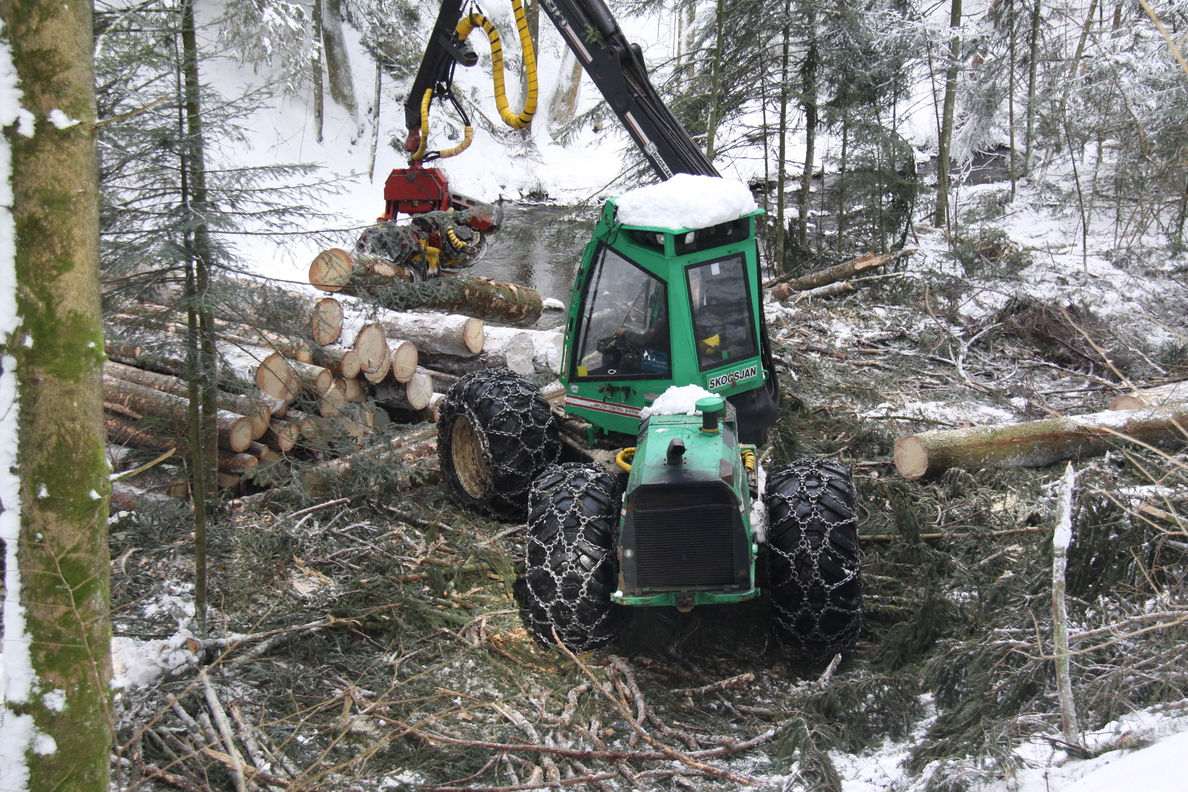 Kurzholzernte